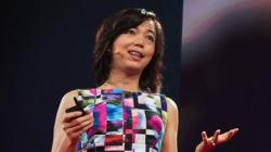 Fei-Fei Li's Ted Talk: How we're teaching computers to understand pictures