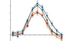 Functional MRI adaptation